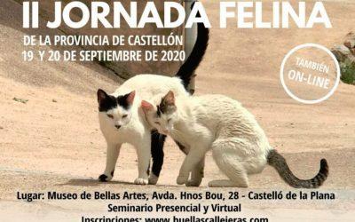 II Jornadas Felinas en Castellón