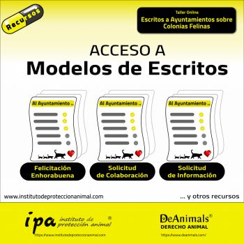3 Modelos de Escritos a Ayuntamientos sobre Colonias Felinas