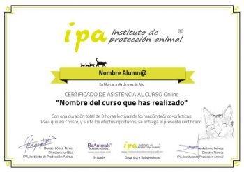 Certificado-IPA