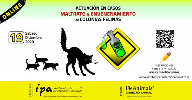 Curso Online Actuación en Casos de Maltrato y Envenenamiento de Colonias Felinas