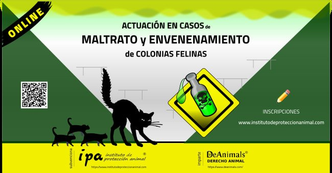 Curso Actua-Casos-Maltrato-Envenenamiento-ColoniasFelinas