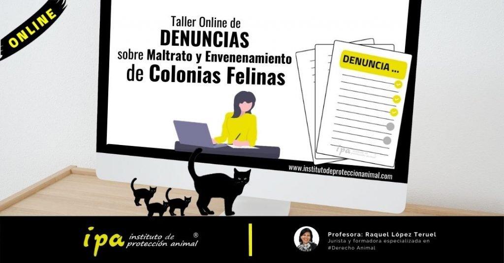 Taller Denuncias Maltrato Envenenamiento Colonias Felinas