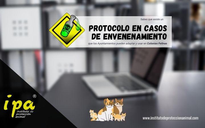 Artículo-Protocolo de actuación en casos de envenenamiento de Colonias Felinas