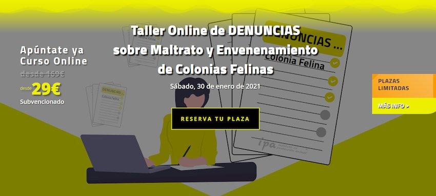 TAller-Denuncias-Colonias-Felinas