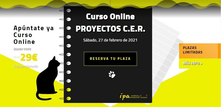 Curso sobre Proyectos CER-IPA