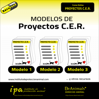 Modelos Proyecto cer
