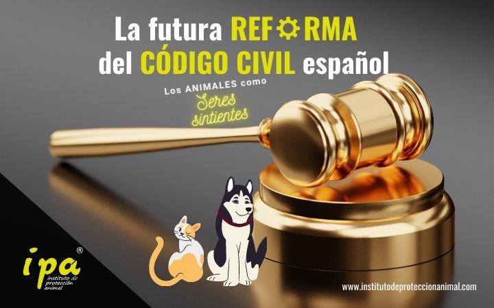 Reforma Código Civil, Animales como seres sintientes