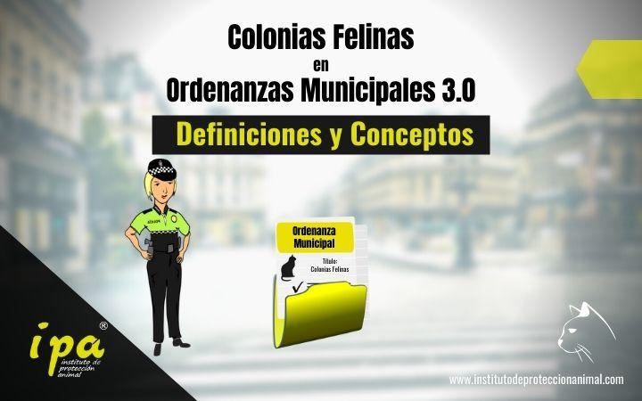 Colonias Felinas en Ordenanzas Municipales 3.0 (Definiciones y Conceptos)