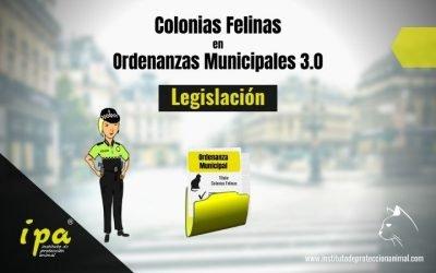 Colonias Felinas en Ordenanzas Municipales 3.0 (Legislación)