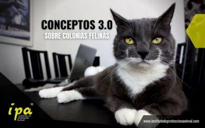 Conceptos 3.0 sobre Colonias Felinas