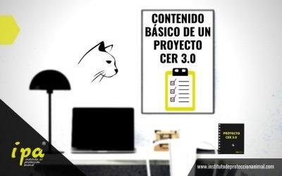 ¿Qué contenido básico debe incluir un Proyecto CER 3.0?