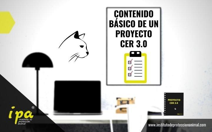 Contenido Básico de un Proyecto CER 3.0