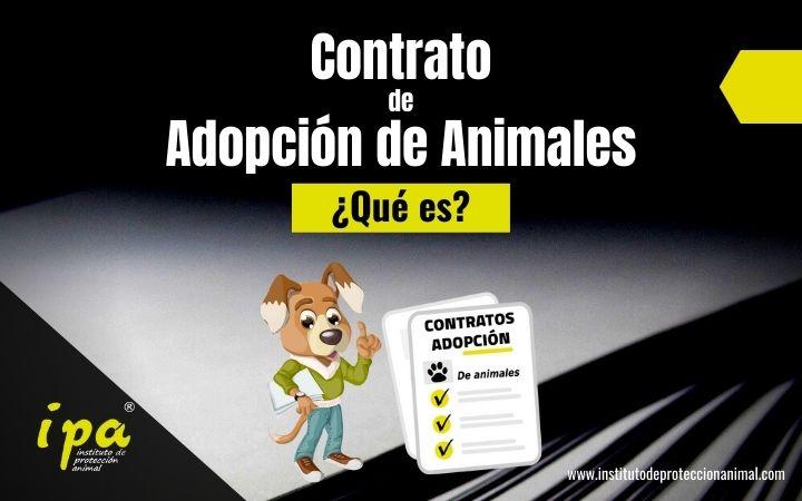 Qué es un Contrato de Adopción de Animales
