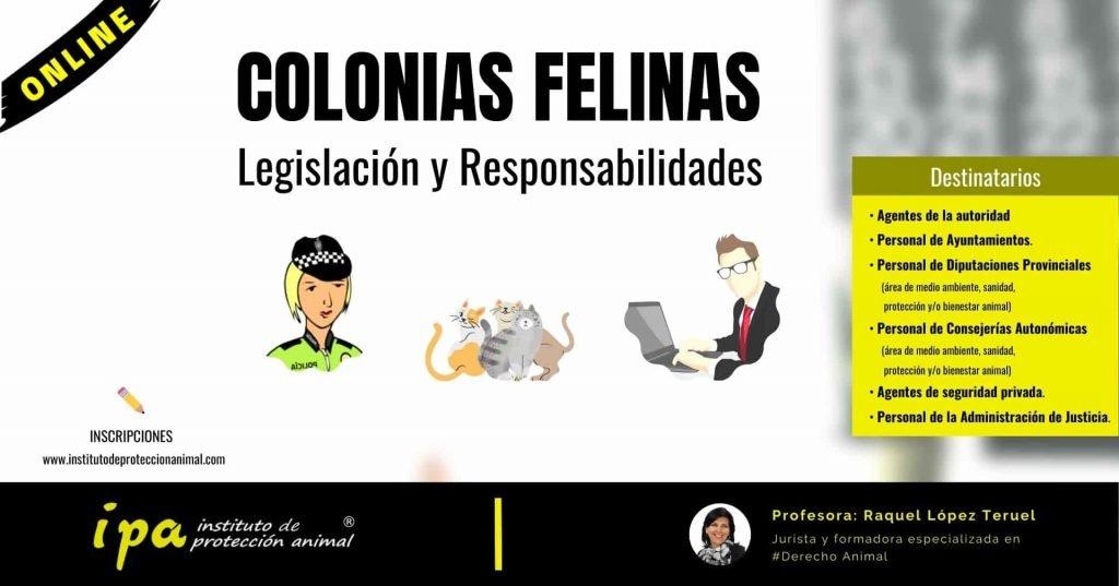 Curso - Colonias Felinas. Legislación y Responsabilidades