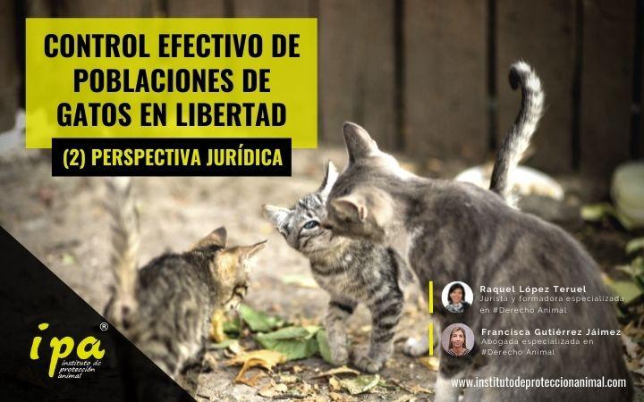 Control Efectivo de Poblaciones de Gatos en Libertad. (2) Perspectiva Jurídica