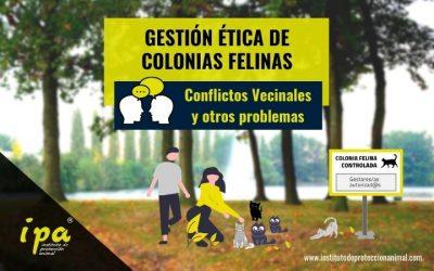 Gestión Ética de Colonias Felinas: Conflictos Vecinales y otros Problemas