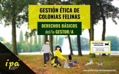 Gestión Ética de Colonias Felinas: Derechos Básicos del/la Gestor/a