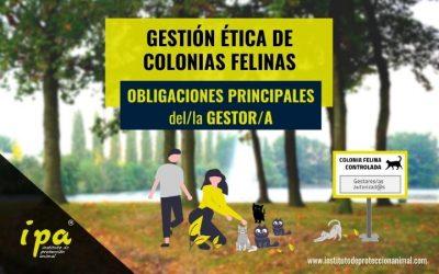 Gestión Ética de Colonias Felinas: Obligaciones del/la Gestor/a