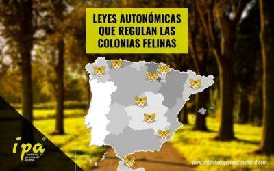 Leyes Autonómicas que Regulan las Colonias Felinas