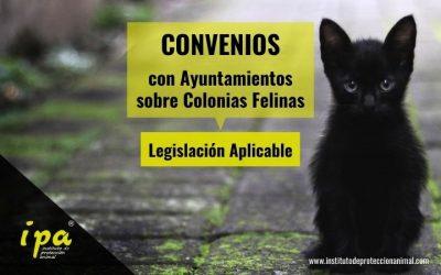 Legislación aplicable a los Convenios sobre  Colonias Felinas
