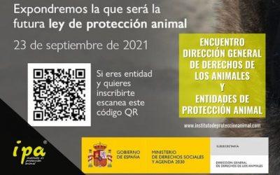 Encuentro Protectoras y Dirección General de Derechos de los Animales